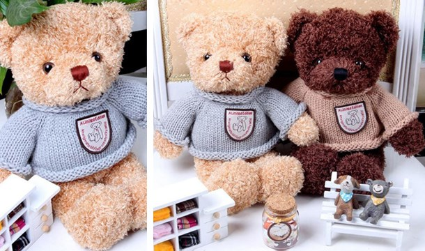 a46cf651b54 Personalised Record your Voice Message Teddy Bear - Save up to 61 ...