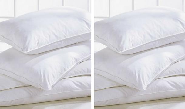 4 super bounce back pillows save up to 60. Black Bedroom Furniture Sets. Home Design Ideas